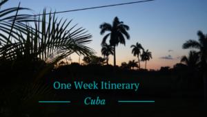 One Week in Cuba text in front of palm tree background